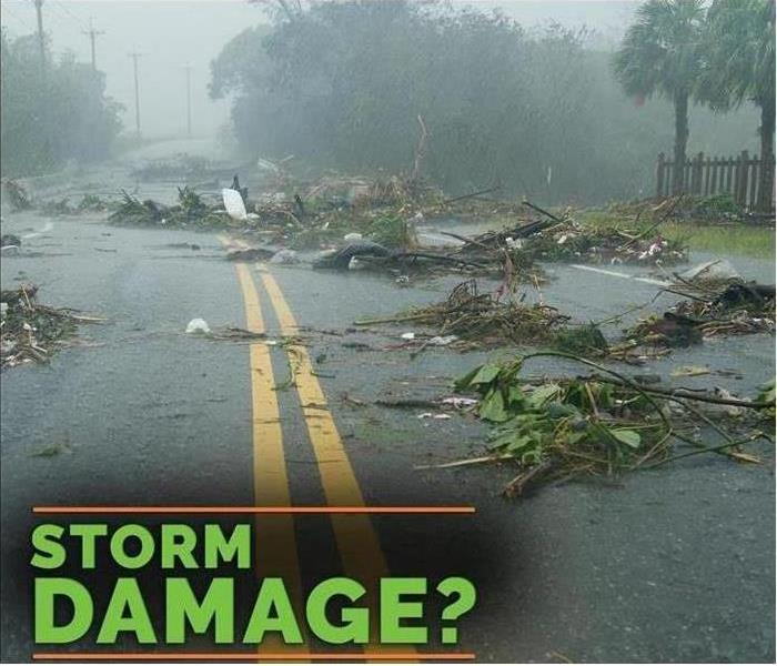 Road with branches, leaves & debris all over it, says Storm Damage?